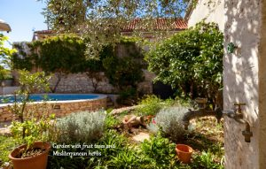 Garden in Villa Vicina with a pool