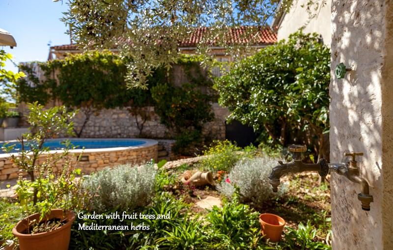 Garden in Villa Vicina with a pool