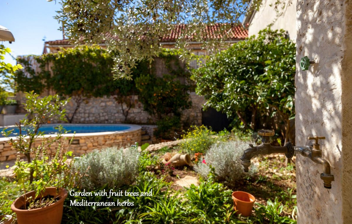 Private garden with fruit trees and Mediterranean herbs